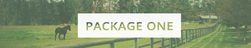 package_one